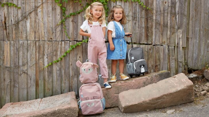 trolley_backpack-image-04-728x409.jpg
