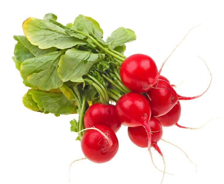 zelenina_redkovky_istock_000012094639small.jpg