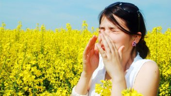 zena-alergia-repka-pole-istock_000015800944-352x198.jpg